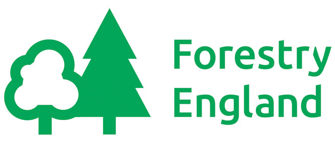 Job opportunity: Visitor services officer, Wendover, Aylesbury, UK with Forestry England