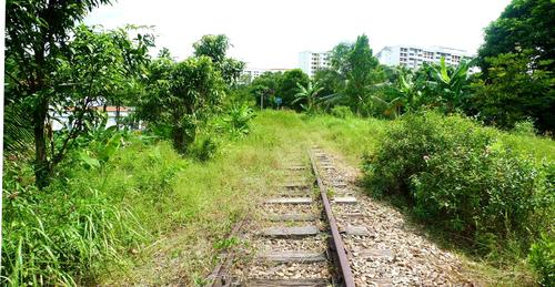 The Singapore Rail Corridor is the site of the country's previous rail link to Malaysia
