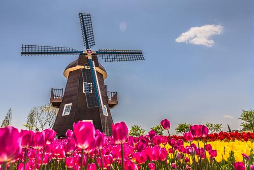 HollandWorld theme park draws inspiration from iconic symbols of the Netherlands / Shutterstock / cnkdaniel