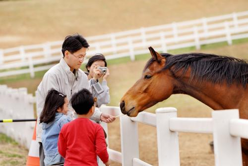 """The KRA said: """"We want the park to become a tourist destination that enriches the local economy and provides an exemplary model for theme park development"""" / Korea Racing Authority"""