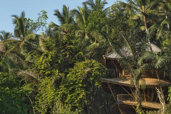 The final three houses will complete the build at the Green Village in Bali  / Photo: IBUKU/Tomasso