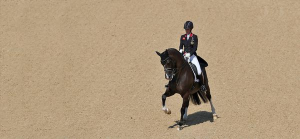 Team GB won two golds and one silver in the Equestrian event (around £6m a medal) / david davies / press association