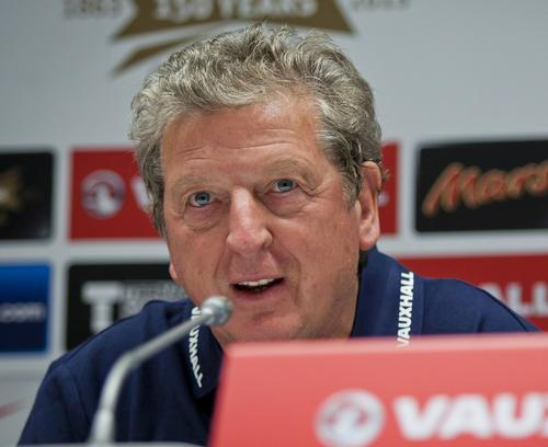 Hodgson said the pitch was 'not in the best of nick' at a recent press conference / katatonia82 / Shutterstock.com