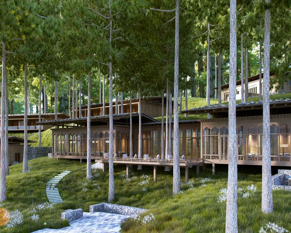 The lodge is set in a pine forest on a hillside above a stream