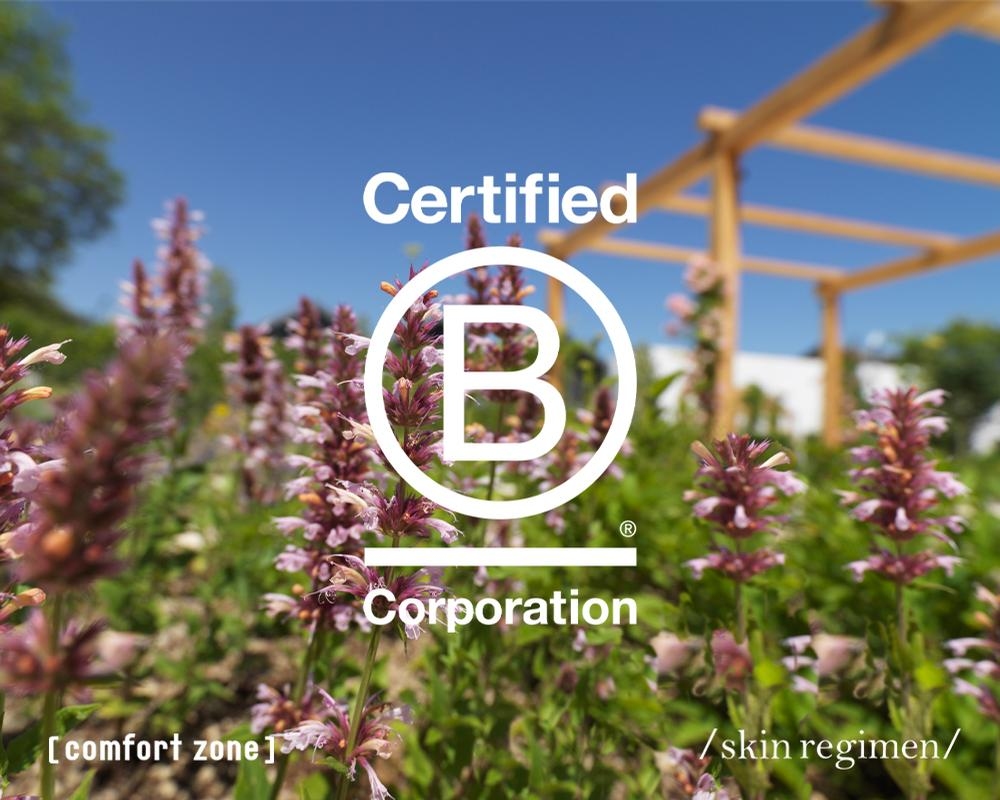 The B Corp Certification recognises businesses that are a force for good in the world