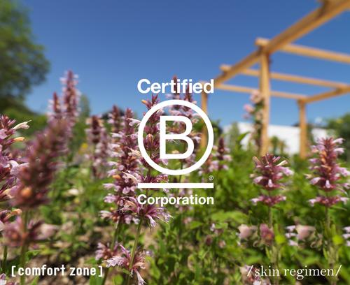 Comfort Zone achieves B Corp Recertification