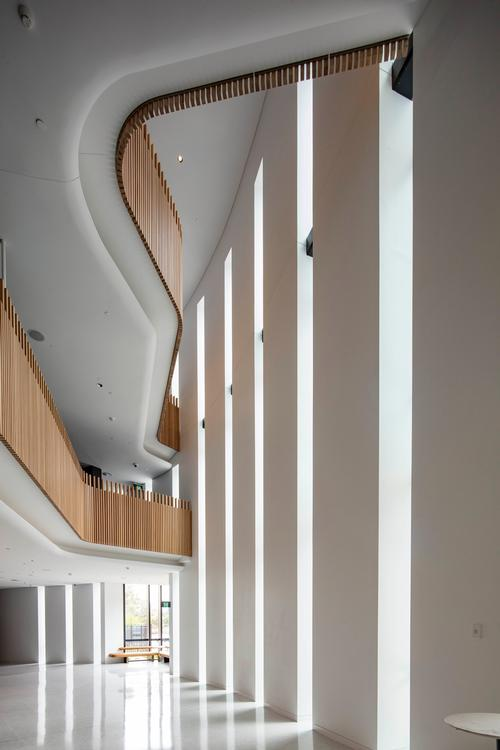 Natural light floods in through tall openings in the building's envelope / John Gollings