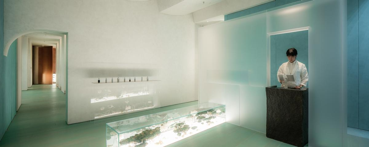 A planted display case gives the reception area a sense of naturality / Waterfrom Design