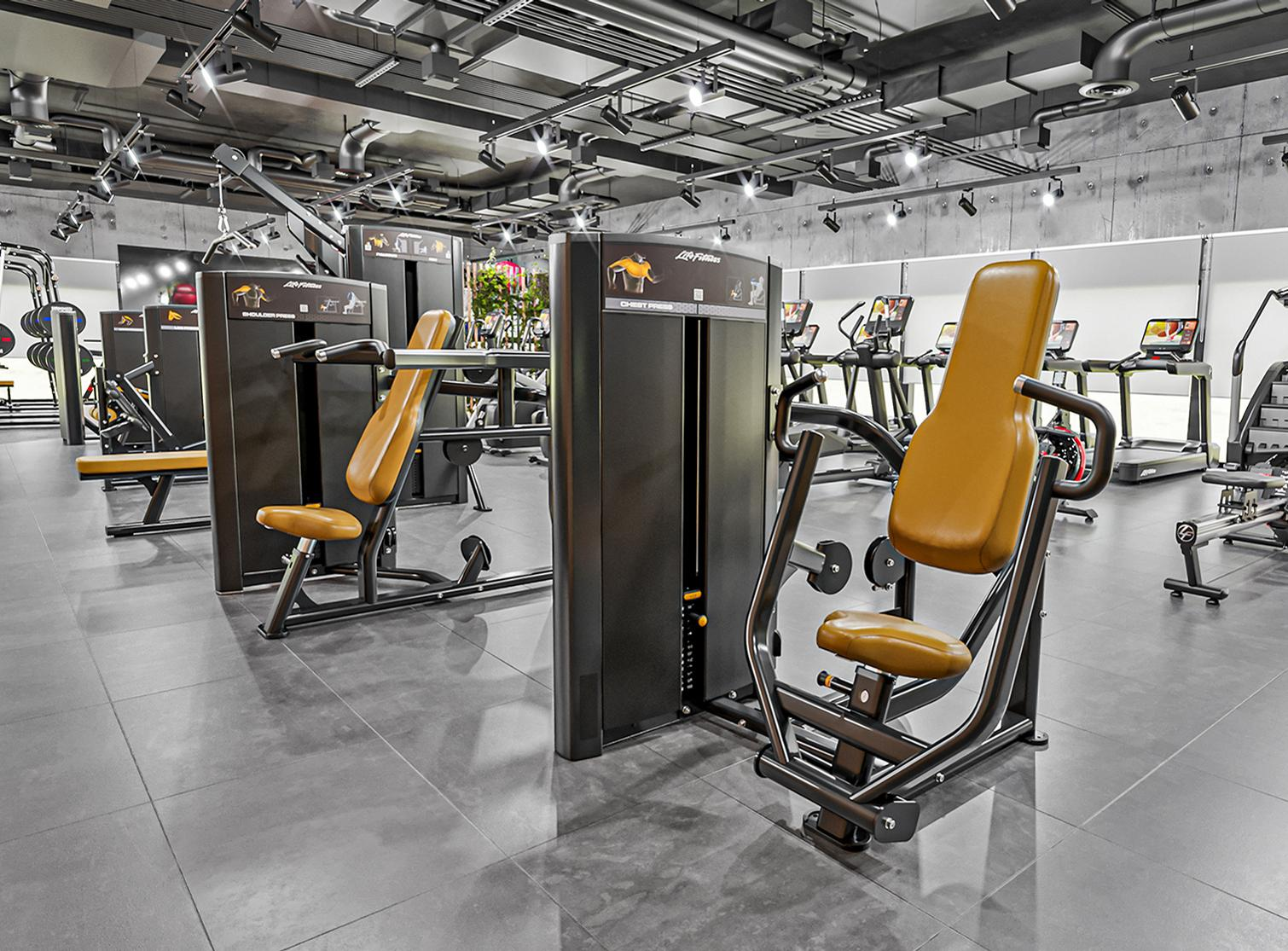 The Axiom Series features 10 single-exercise and eight dual-exercise selectorised machines / Life Fitness