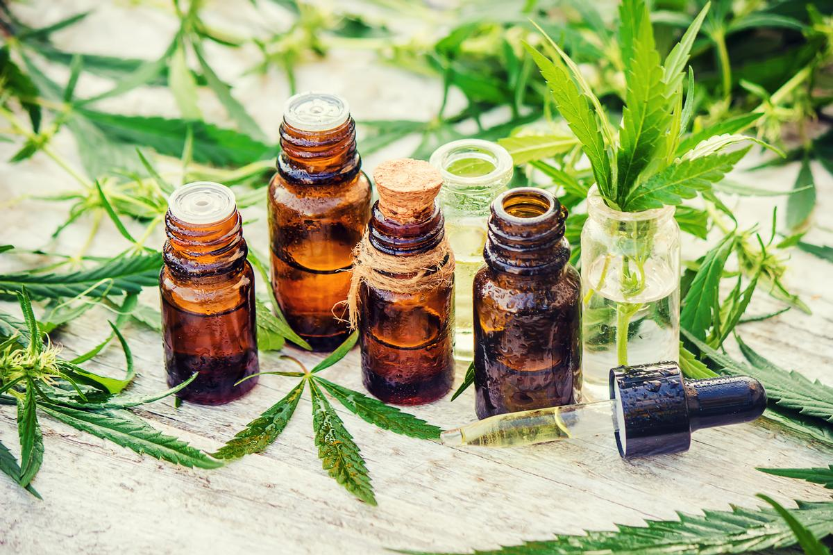 The self-led, online course costs US$504 (£395, €432) and includes Color Up classes' core modules on the history of cannabis, ranging from modern-day uses to the science behind its efficacy / Shutterstock: Tatevosian Yana