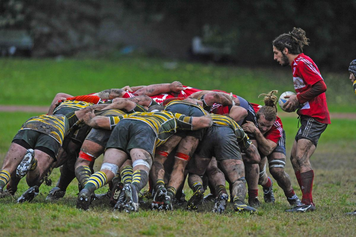 Rugby union is the largest recipient of funding, with a total of £135m spread across the sport / Shutterstock.com/Paolo Bona
