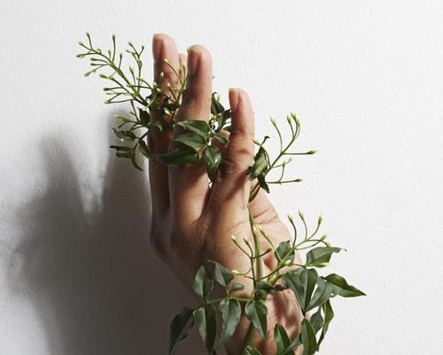 Five of agua London's signature treatments have been reimagined using new Hedgerow by agua products