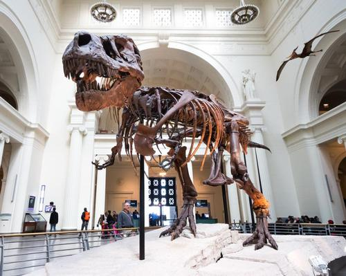 Museums across the US are feeling the crunch thanks to forced closures / Shutterstock.com