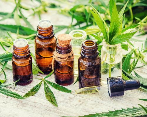 The self-led, online course costs US$504 (£395, €432) and includes Color Up classes' core modules on the history of cannabis, ranging from modern-day uses to the science behind its efficacy