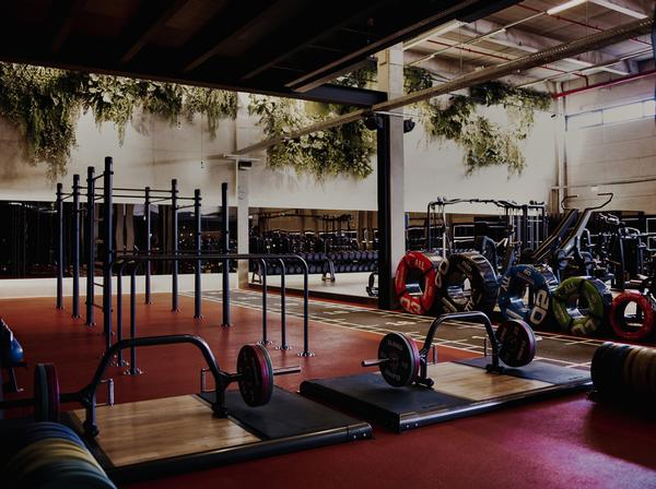 The space is set up to support a wide range of training types, from calisthenics to Pilates / photo: URBAN HEALTH CLUB