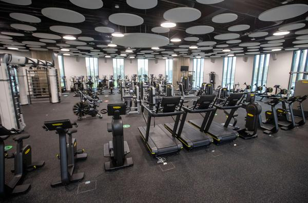 The gym, fitness suite and high performance training areas have been designed to Olympic standards / photo: TECHNOGYM