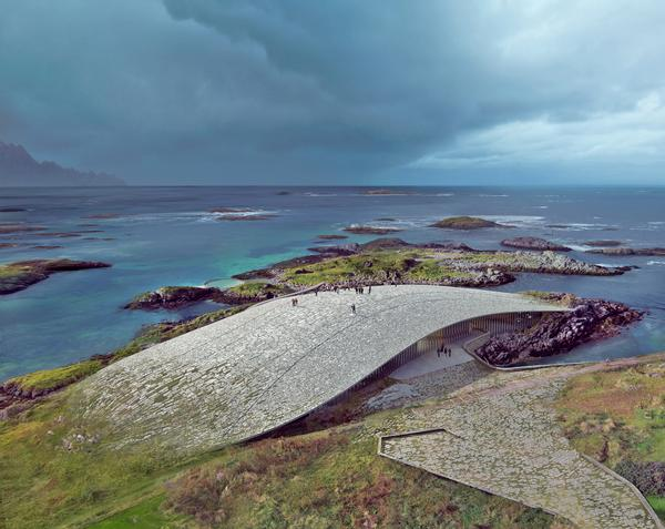 The roof of The Whale will provide views of migrating whales / Dorte Mandrup and Mir