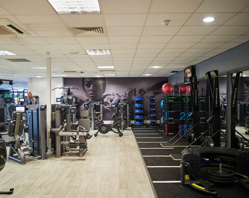 Company profile: Pulse Fitness