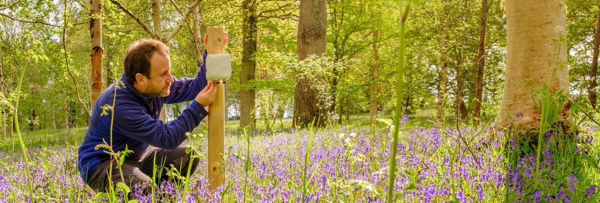 Kew Gardens establishes new 'living laboratory' to study biodiversity