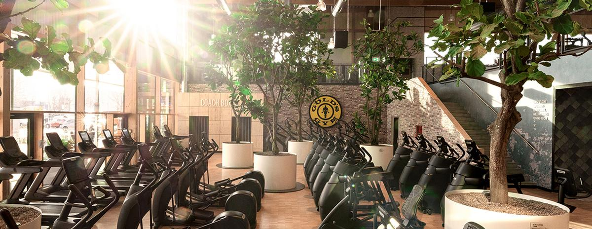 The environmentally-friendly solutions include real plants and trees throughout the interior of the gym / Gold's Gym/RSG Group