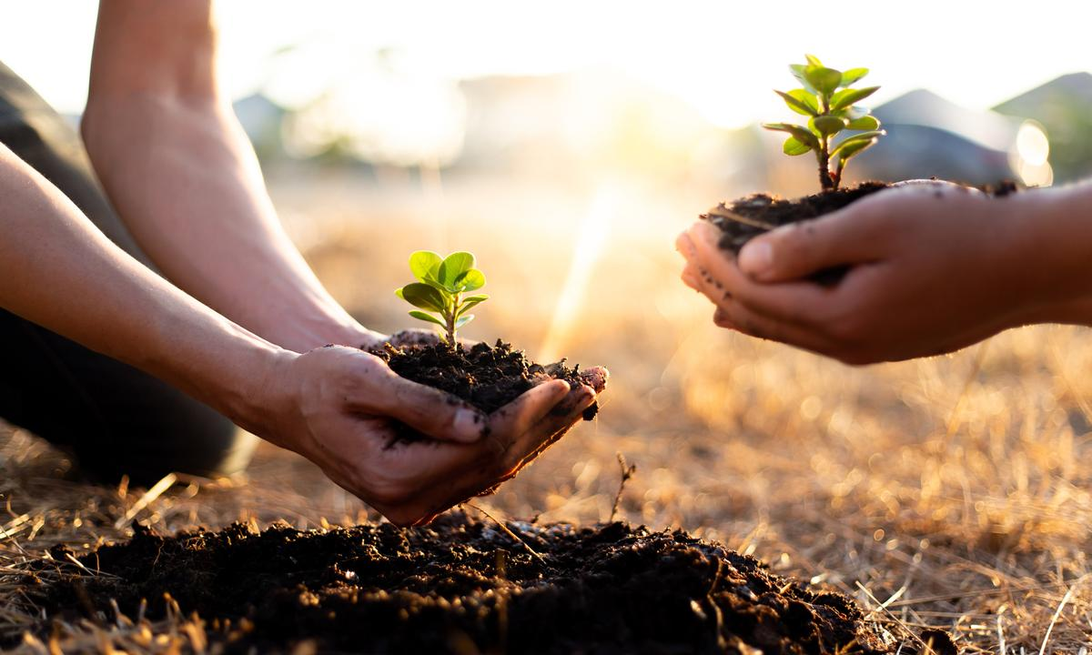 GSN staff are a group of like-minded earth activists that believe in the power of generating a sustainable movement of self-practice that will in turn generate a strong relationship to the planet / Shutterstock/89stocker