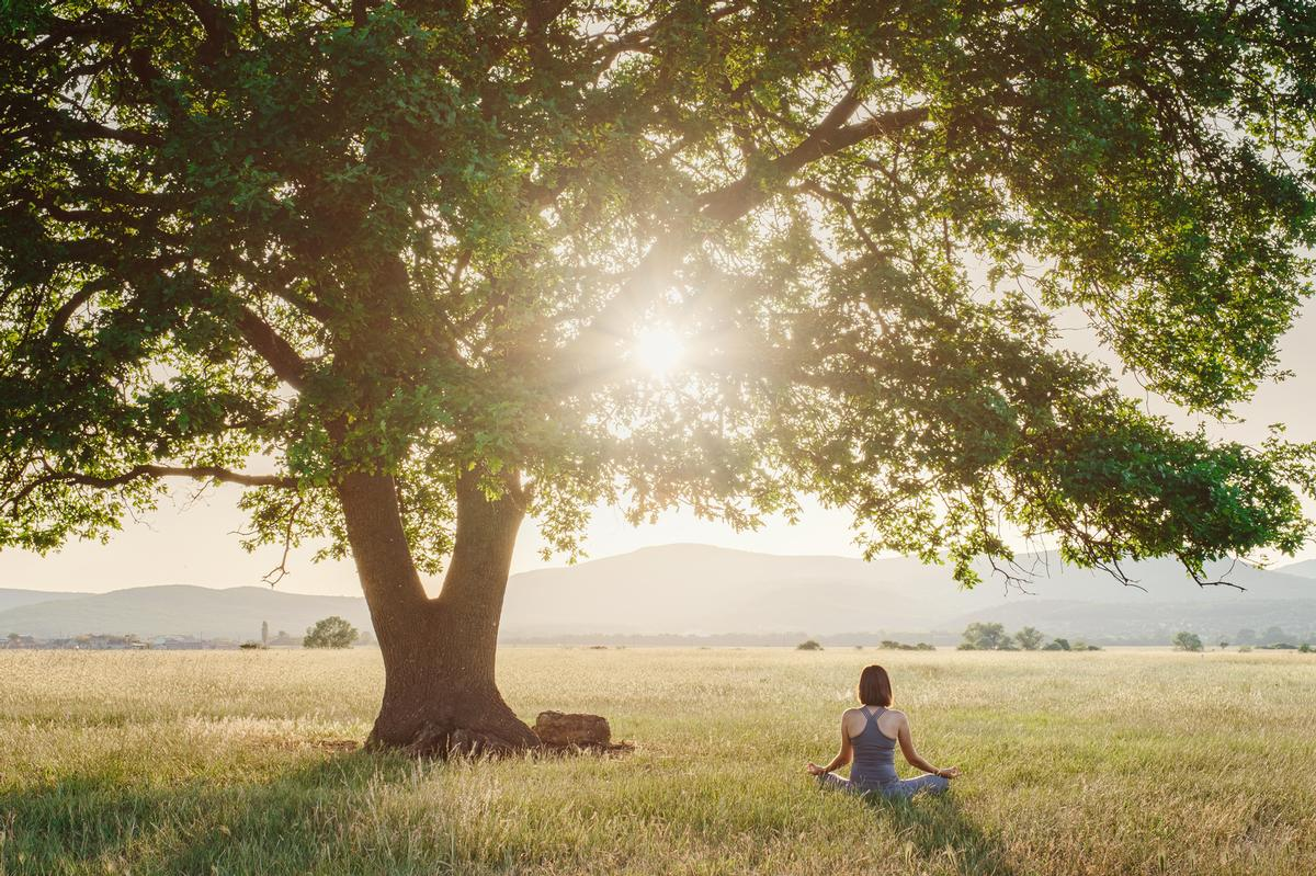 Findings showed respondents felt access to quiet spaces and nature were considered must-haves for their wellness travels / Shutterstock/Maples Images