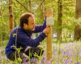 The move is part of a research project to explore the benefits of biodiversity in the UK / Kew Gardens