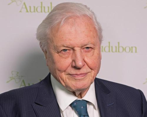 David Attenborough to front AR-based natural world app