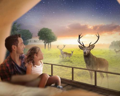 The lodges will offer views of red deer roaming in their habitat