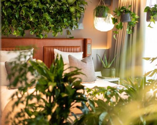 Luxury Scottish hotel combats burnout with new biophilic forest bathing hotel suite @Kimpton @BenholmGroup #LaRueVerte #biophilia #forestbathing #nature #healing #wellbeing #CBD #hemp