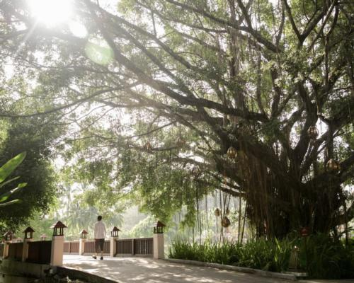 Banyan Tree expands Wellbeing Sanctuary concept to Koh Samui and Krabi locations