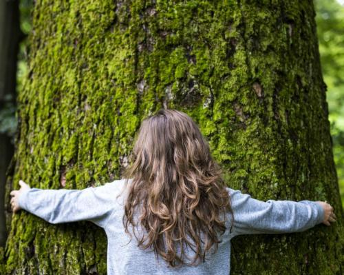 Grand Hotel Tremezzo launches tree-hugging retreat to encourage healing within nature