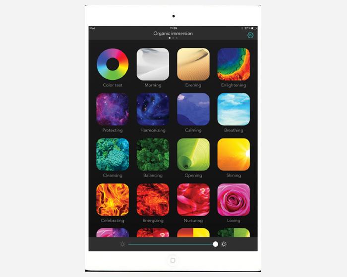 Mycoocoon launches Color-Institute app