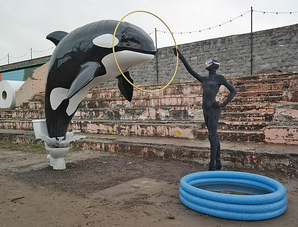 A whale jumps from a toilet into a paddling pool
