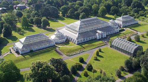 An aerial view of the Temperate House / © Board of Trustees, RBG Kew