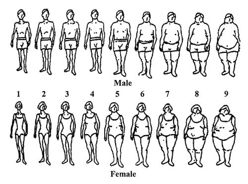 The visual scale used as part of the study (pictured) threw up some alarming body perceptions / http://edbites.com/