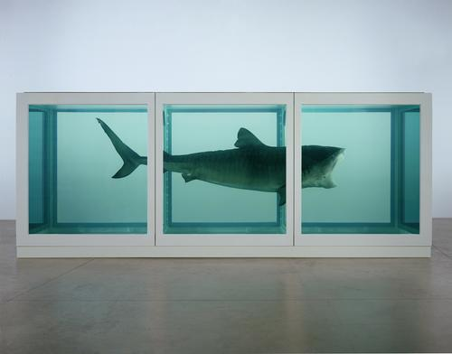 Damien Hirst's personal collection to go on display at new gallery in 2015