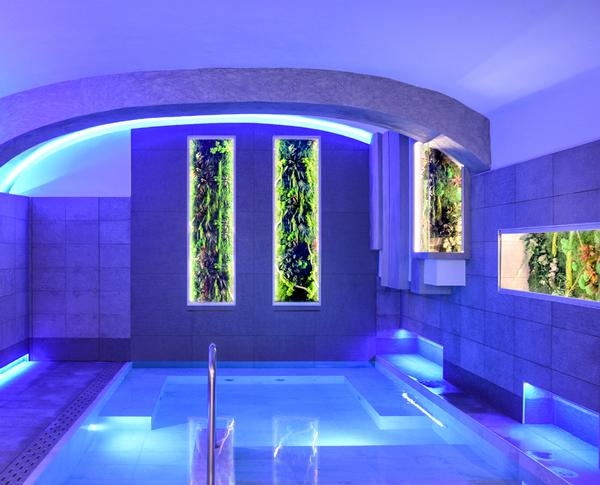 The moss panels don't require direct sunlight, watering or feeding