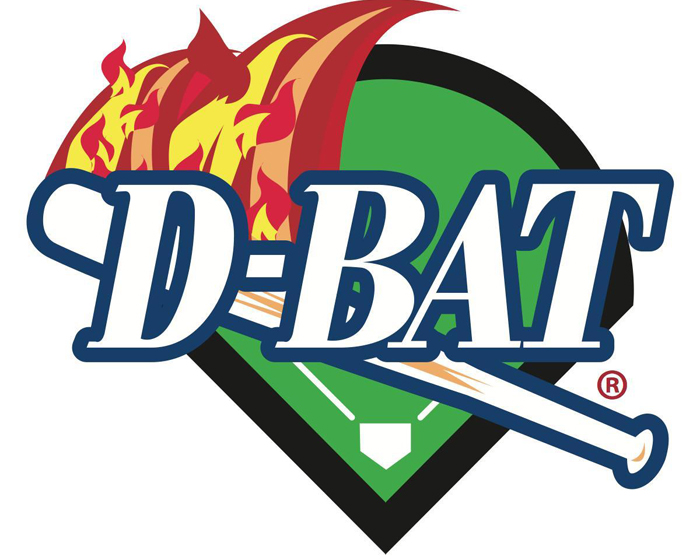 D-Bat hits home run with new Embed systems
