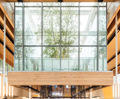 In the centre of the restaurant sits a raised garden of ferns and white birch trees positioned within a glass cube. / McDonald's