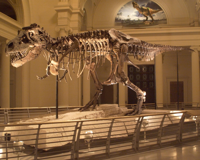 The Field Museum partners with Atlantic Productions for new digital dinosaur exhibit