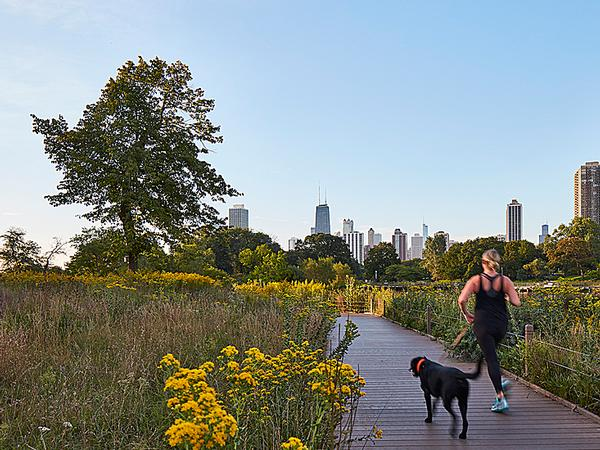 the Nature Boardwalk at Lincoln Park Zoo