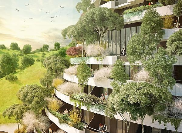 Some 1,100 trees of 