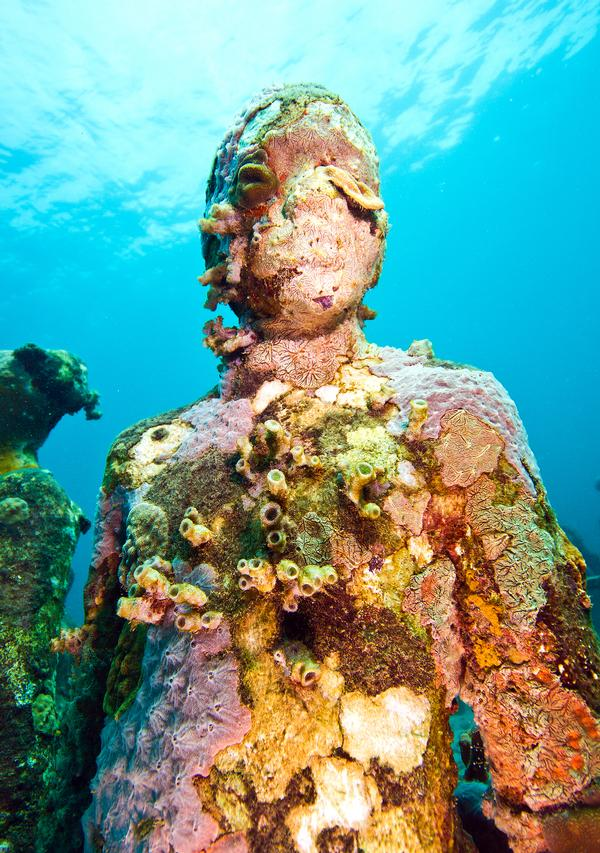 The underwater sculptures become a natural home to coral and reef fish, which change their appearance