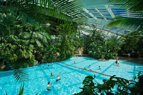 Blackstone 'rejects' £2bn Center Parcs bid with plans to float on stock market