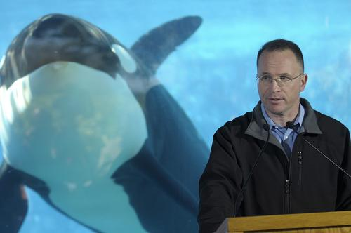 SeaWorld CEO resigns as struggling company faces US$50m in cuts
