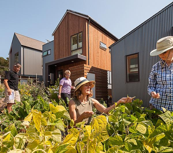 Grow features a variety of different garden options, with the aim of encouraging community interaction