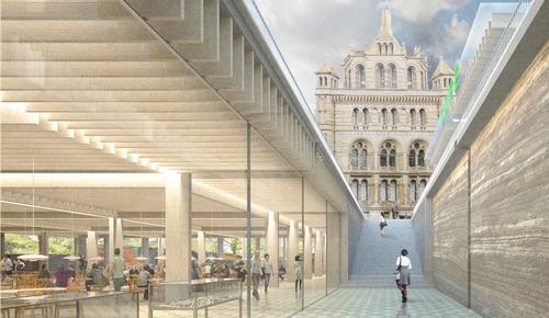 Niall McLaughlin Architects wins Natural History Museum redevelopment contest