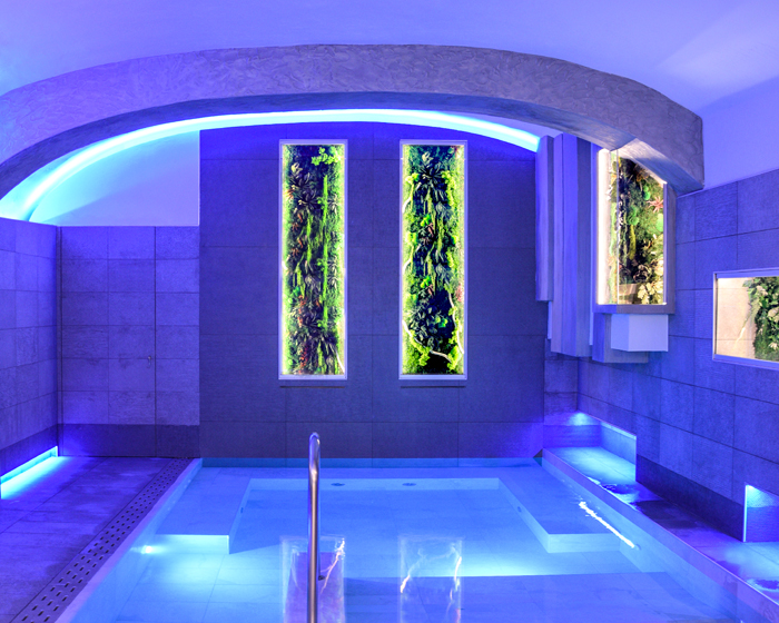 Moss Trend expands into spa market