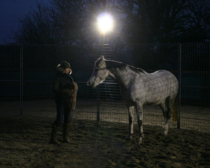 Equestrians see the light in unusual application for Core<